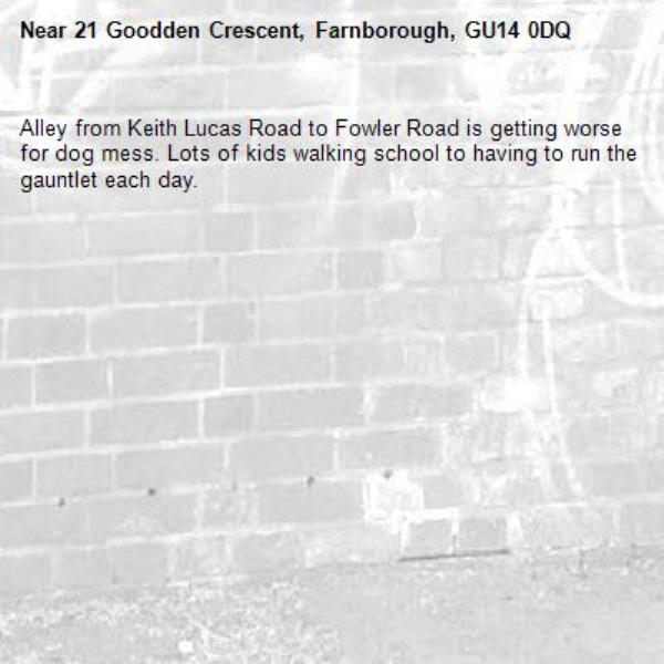 Alley from Keith Lucas Road to Fowler Road is getting worse for dog mess. Lots of kids walking school to having to run the gauntlet each day.-21 Goodden Crescent, Farnborough, GU14 0DQ