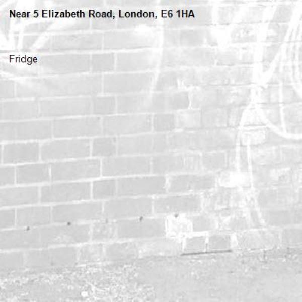 Fridge-5 Elizabeth Road, London, E6 1HA