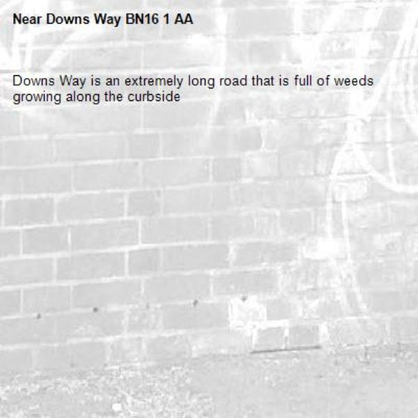 Downs Way is an extremely long road that is full of weeds growing along the curbside -Downs Way BN16 1 AA