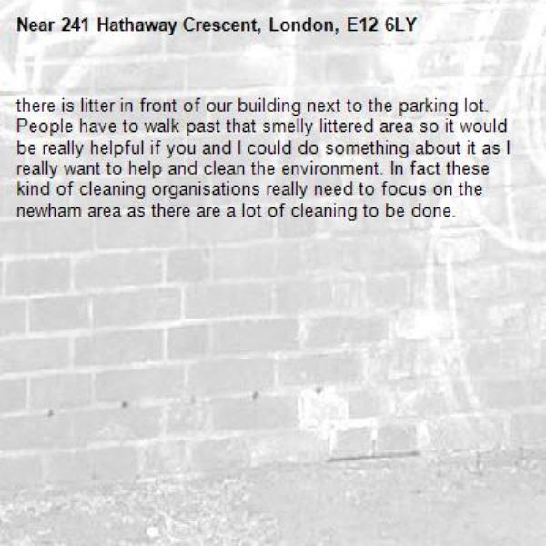there is litter in front of our building next to the parking lot. People have to walk past that smelly littered area so it would be really helpful if you and I could do something about it as I really want to help and clean the environment. In fact these kind of cleaning organisations really need to focus on the newham area as there are a lot of cleaning to be done.-241 Hathaway Crescent, London, E12 6LY