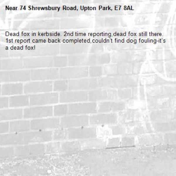 Dead fox in kerbside. 2nd time reporting,dead fox still there. 1st report came back completed,couldn't find dog fouling-it's a dead fox!-74 Shrewsbury Road, Upton Park, E7 8AL