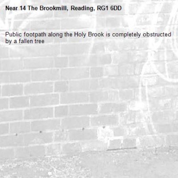 Public footpath along the Holy Brook is completely obstructed by a fallen tree-14 The Brookmill, Reading, RG1 6DD