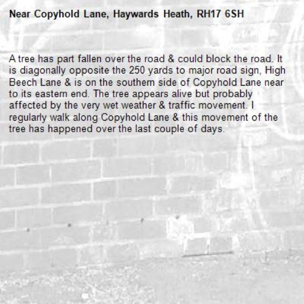 A tree has part fallen over the road & could block the road. It is diagonally opposite the 250 yards to major road sign, High Beech Lane & is on the southern side of Copyhold Lane near to its eastern end. The tree appears alive but probably affected by the very wet weather & traffic movement. I regularly walk along Copyhold Lane & this movement of the tree has happened over the last couple of days.-Copyhold Lane, Haywards Heath, RH17 6SH