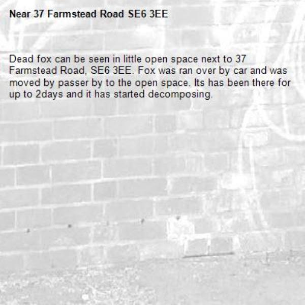 Dead fox can be seen in little open space next to 37 Farmstead Road, SE6 3EE. Fox was ran over by car and was moved by passer by to the open space. Its has been there for up to 2days and it has started decomposing.-37 Farmstead Road SE6 3EE