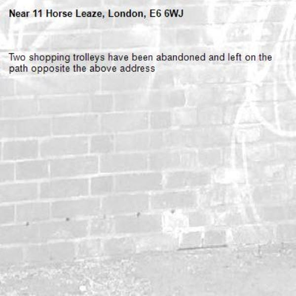 Two shopping trolleys have been abandoned and left on the path opposite the above address -11 Horse Leaze, London, E6 6WJ