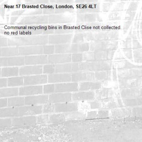 Communal recycling bins in Brasted Clise not collected. no red labels-17 Brasted Close, London, SE26 4LT