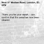 Thank you for your report, I can confirm that this area has now been cleared.-87 Median Road, London, E5 0PN