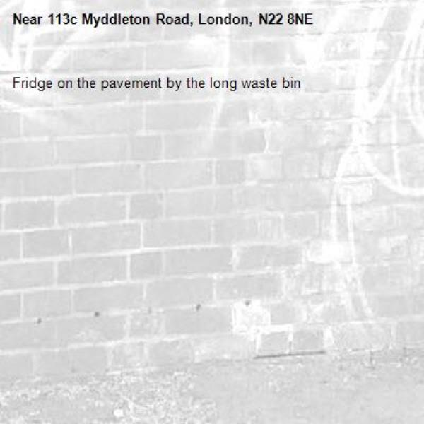 Fridge on the pavement by the long waste bin-113c Myddleton Road, London, N22 8NE