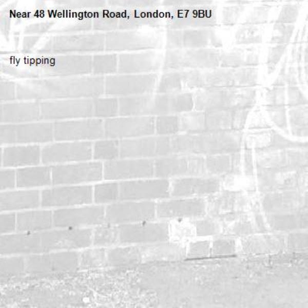 fly tipping -48 Wellington Road, London, E7 9BU