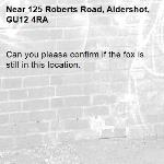 Can you please confirm if the fox is still in this location. -125 Roberts Road, Aldershot, GU12 4RA