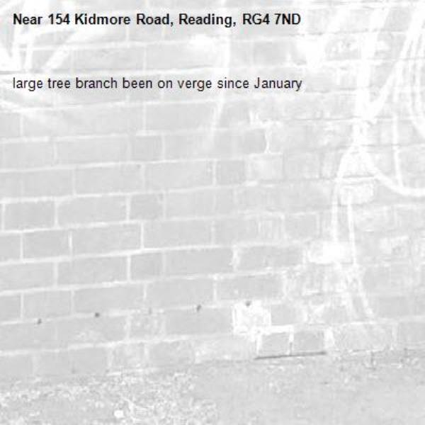 large tree branch been on verge since January-154 Kidmore Road, Reading, RG4 7ND